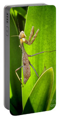 Portable Battery Charger featuring the photograph Praying Mantis by Kasia Bitner