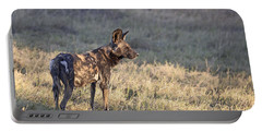 Portable Battery Charger featuring the photograph Pregnant African Wild Dog by Liz Leyden