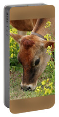 Pretty Jersey Cow Square Portable Battery Charger
