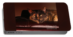 Portable Battery Charger featuring the photograph Pretty Kitty by Oksana Semenchenko