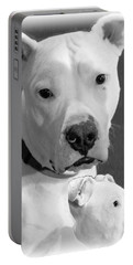 Portable Battery Charger featuring the photograph Prettyboy by Robert McCubbin