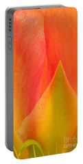 Portable Battery Charger featuring the photograph Prickly Pear Flower Petals Opuntia Lindheimeni In Texas by Dave Welling