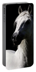 Proud Stallion Portable Battery Charger