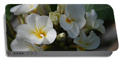 Pua Melia Na Puakea Onaona Tropical Plumeria Portable Battery Charger