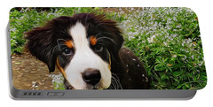 Puppy Art - Little Lily Portable Battery Charger by Jordan Blackstone