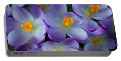 Purple Crocus Gems Portable Battery Charger by Tikvah's Hope