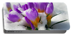 Purple Crocuses In The Snow Portable Battery Charger
