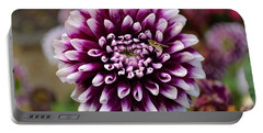Purple Dahlia White Tips Portable Battery Charger