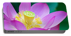 Purple Lotus Blossom Portable Battery Charger
