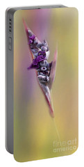 Purplicious Portable Battery Charger