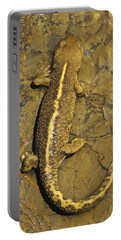 Pyrenean Brook Newt Portable Battery Charger