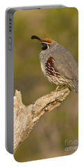 Portable Battery Charger featuring the photograph Quail On A Stick by Bryan Keil