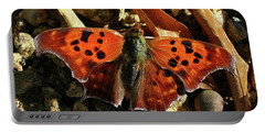 Portable Battery Charger featuring the photograph Question Mark Butterfly by Donna Brown