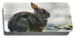 Portable Battery Charger featuring the photograph Rabbit by Yulia Kazansky
