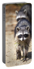 Portable Battery Charger featuring the photograph Raccoons by David Millenheft