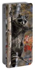 Racoon In Tree Portable Battery Charger by Chris Scroggins