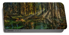Rain Forest Sunbeams Portable Battery Charger