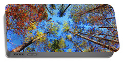 Rainbow Fall Portable Battery Charger