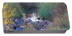Rainbow Pond Portable Battery Charger