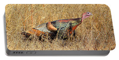 Rainbow Turkey Portable Battery Charger
