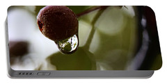 Raindrop Reflection 1 Portable Battery Charger