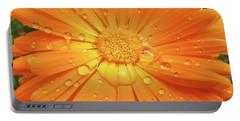 Raindrops On Orange Daisy Flower Portable Battery Charger