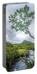 Rainy Evening On A Mountain Stream Portable Battery Charger