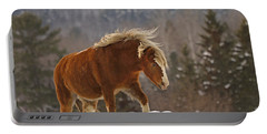 Rancher's Dream Portable Battery Charger