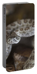 A Rattlesnake Thats Ready To Strike Portable Battery Charger