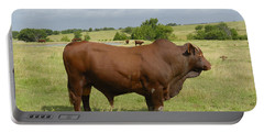 Red Angus Bull Portable Battery Charger by Charles Beeler