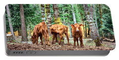 Red Angus Calves Portable Battery Charger