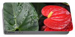 Red Anthurium Flower Portable Battery Charger by Denise Bird
