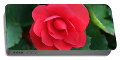 Portable Battery Charger featuring the photograph Red Begonia by Sergey Lukashin