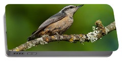 Red Breasted Nuthatch In A Tree Portable Battery Charger