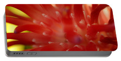 Portable Battery Charger featuring the photograph Red Bromeliad by Greg Allore