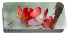 Red Christmas Cactus Bloom Portable Battery Charger