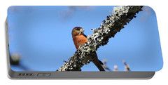 Red Crossbill Finch Portable Battery Charger
