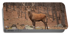Red Deer Portable Battery Charger by Eunice Gibb