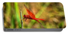 Red Dragon Dreams Portable Battery Charger