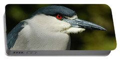 Portable Battery Charger featuring the photograph Red Eye - Black-crowned Night Heron Portrait by Georgia Mizuleva