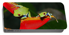 Red Eyed Tree Frogs Portable Battery Charger by Bob Hislop