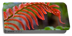 Autumn Fern In Hawaii Portable Battery Charger by Venetia Featherstone-Witty