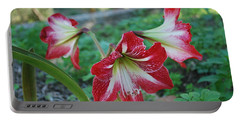Red Flower 1 Portable Battery Charger by George Katechis