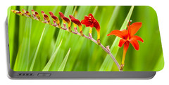 Red Flower Family Portable Battery Charger