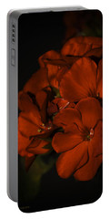 Portable Battery Charger featuring the photograph Red Flowers In Evening Light by Lucinda Walter