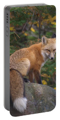 Portable Battery Charger featuring the photograph Red Fox by James Peterson