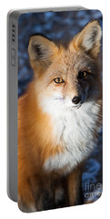 Red Fox Standing Portable Battery Charger