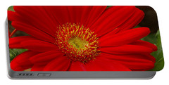 Red Gerbera Daisy Portable Battery Charger by James C Thomas