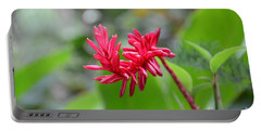 Red Ginger Portable Battery Charger