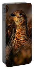 Portable Battery Charger featuring the photograph Red Grouse by Gavin Macrae